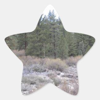 Mountain Views Star Sticker