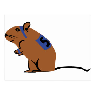 Mouse - Gerbil Postcard