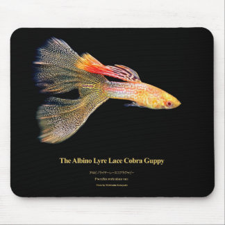 Mouse pad of albino raiya cobra guppy