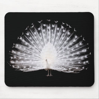Mouse pad of margin peafowl, No.01
