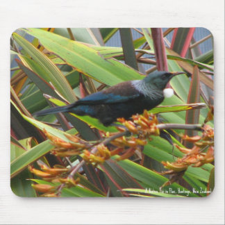 Mouse Pad, Tui in Flax Mouse Pad