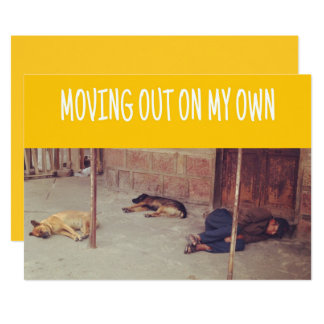 Moving Out Announcement (Man and dogs on street)