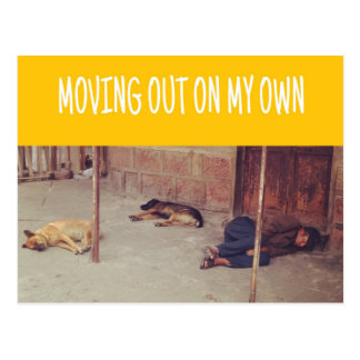 Moving Out On My Own Postcard