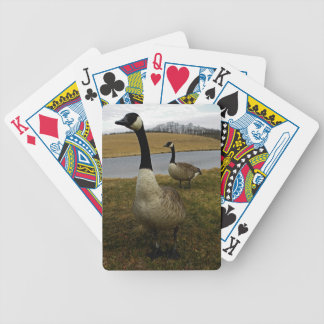 Mr and Mrs C Goose Playing Cards