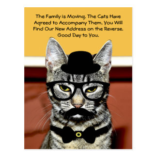Mr. Cat Announces Upcoming Family Move Postcard