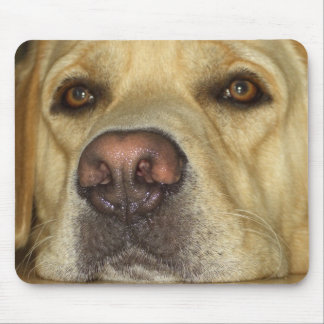 Mr. King Mouse Pad