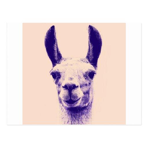 Mr Llama Postcards