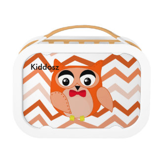 Mr owl is a cute orange and brown owl illustration lunchboxes