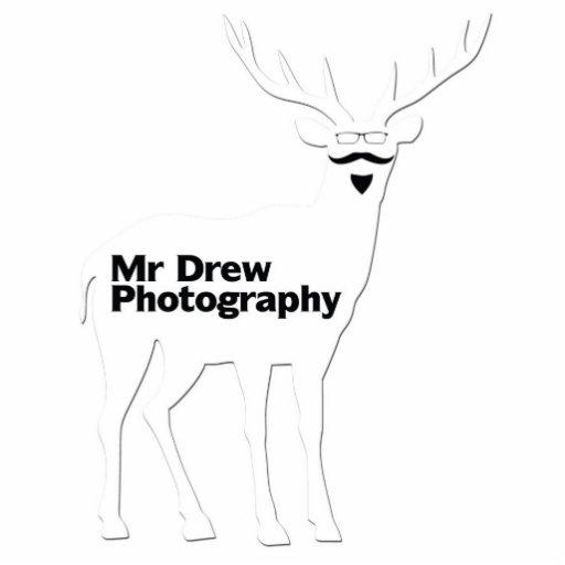 Mr Sculpture Photo Sculptures