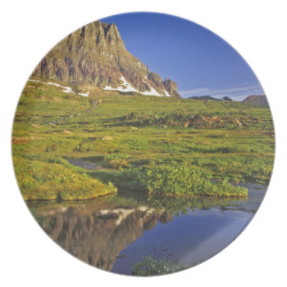 Mt Clements reflects into small pool at Logan Plate