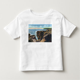 Mt. Desert Island View of Thunder Hole Toddler T-Shirt