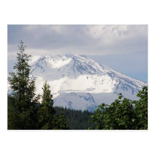 Mt. Shasta Post Card
