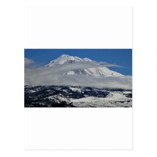 Mt Shasta Vista Postcard