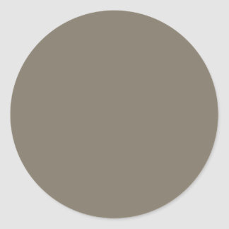 MUD BROWN Color Shades: Organizing Writing Tools Classic Round Sticker