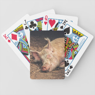 Mud Pig Bicycle Playing Cards