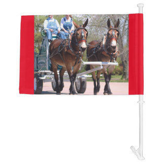 mule days car flag