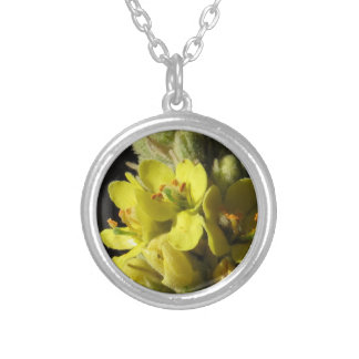 Mullen Flowers Silver Plated Necklace