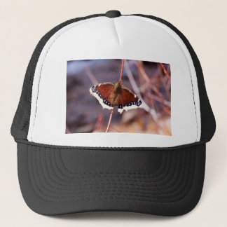 Multicolored Moth Trucker Hat