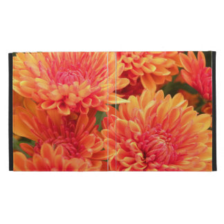 Mums in Bloom iPad Folio Covers