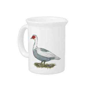 Muscovy Blue Pied Duck Pitcher