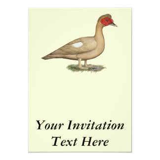 Muscovy Light Chocolate Drake 13 Cm X 18 Cm Invitation Card