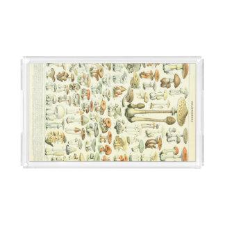 Mushrooms Acrylic Tray
