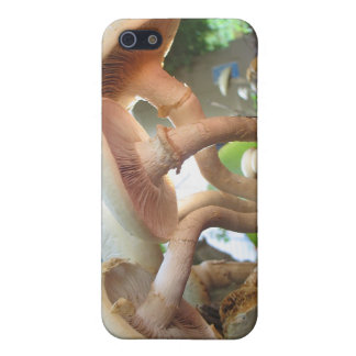 Mushrooms Dancing Case For The iPhone 5