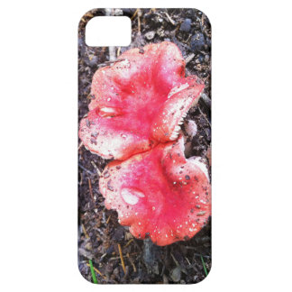 Mushrooms iPhone 5 Cover