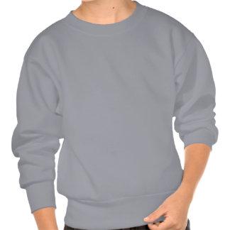 MWS flying squirrels logo! Pullover Sweatshirts