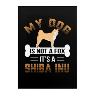 My Dog Is Not A Fox It's A Shiba Inu Acrylic Wall Art
