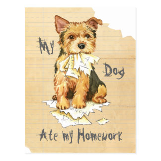 My Norwich Terrier Ate my Homework Postcard