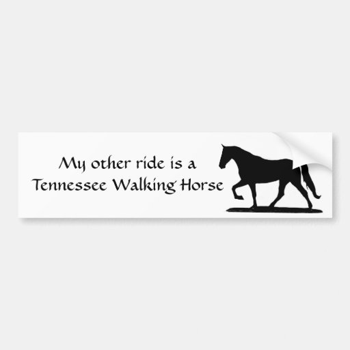 My other ride is a Tennessee Walking Horse Bumper Stickers