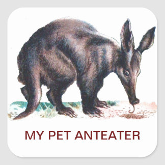 MY PET ANTEATER SQUARE STICKER