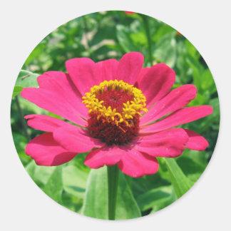 MY PINK FLOWER ROUND STICKERS