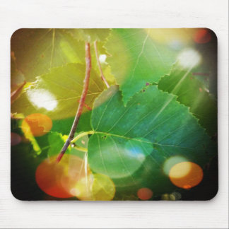 Mystical Leaves in Boothbay Themed Mousepad