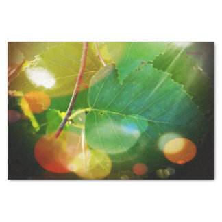 Mystical Leaves of Boothbay 10lb Tissue Paper