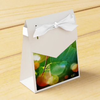 Mystical Leaves of Boothbay Maine Tent Gift Box