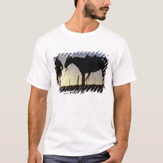 N.A., USA, Oregon, Seneca, Ponderosa Ranch, T-Shirt