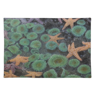 N.A., USA, Washington, Olympic National Park, 2 Placemat