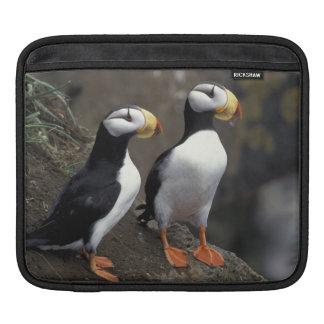 NA, USA, Alaska, Bering Sea, Pribilofs, St. 2 iPad Sleeve