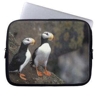 NA, USA, Alaska, Bering Sea, Pribilofs, St. 2 Laptop Sleeve
