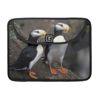 NA, USA, Alaska, Bering Sea, Pribilofs, St. 2 Sleeve For MacBooks