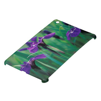 NA, USA, Alaska, Knight Island, Wild iris iPad Mini Cover