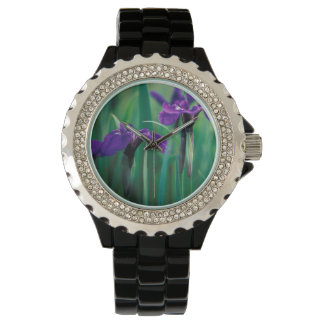 NA, USA, Alaska, Knight Island, Wild iris Watch