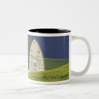 NA, USA, Idaho, south of Genesse, Canola field Two-Tone Coffee Mug