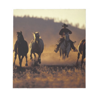 NA, USA, Oregon, Seneca, Ponderosa Ranch, Cowboy 2 Notepad