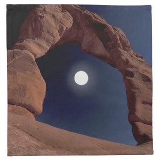 NA, USA, Utah, Arches National Park. Delicate Napkin
