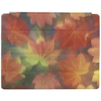 NA, USA, Washington, Issaquah, Vine maple iPad Cover