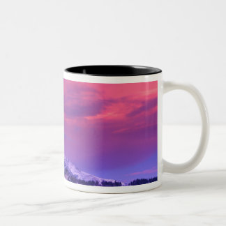 NA, USA, Wyoming, Yellowstone NP, Lamar Valley Two-Tone Coffee Mug