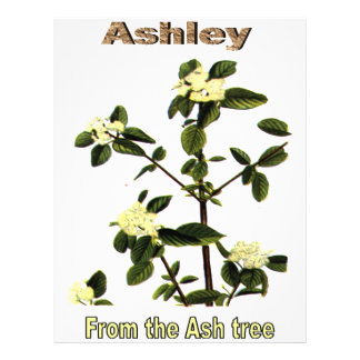 Names&Meanings - Ashley Flyers